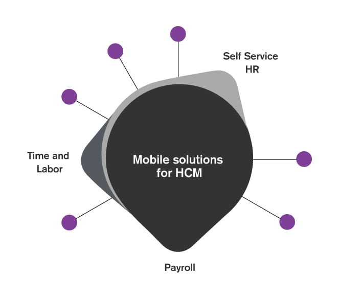 HCM solutions infographic